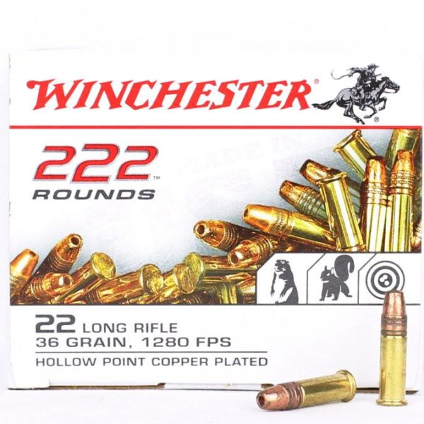 Winchester 22 LR 36 Grain Hollow Point (222)